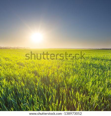 quiet rural scene - stock photo