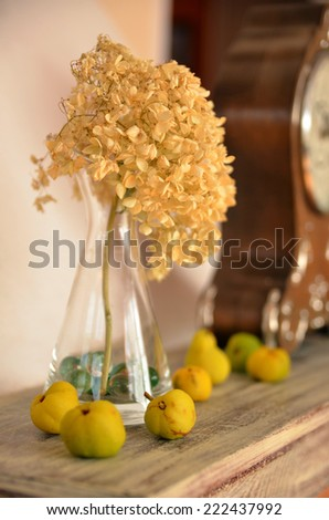 Quince fruits on a mantelpiece used as a home decoration. Decorative detail. Selective focus. - stock photo