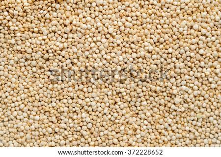 quinoa - stock photo