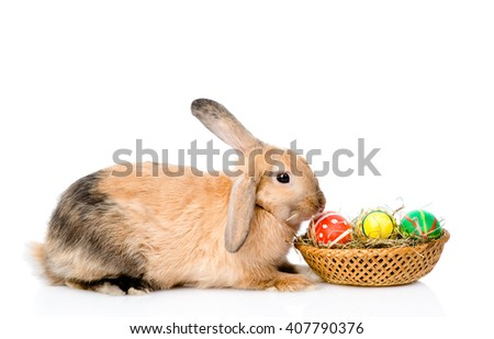 Rabbit sitting with basket easter eggs. isolated on white background - stock photo