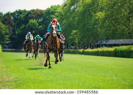 Race horses with jockeys on the home straight - stock photo