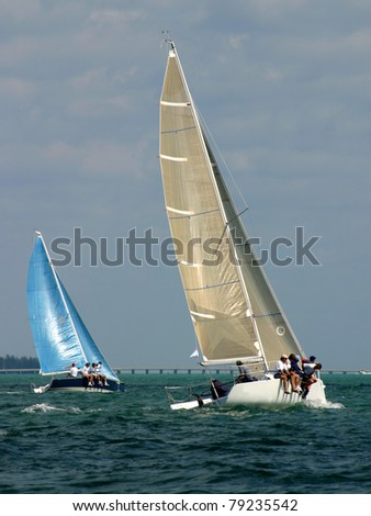 Racing Sailboats Competing in a Regatta