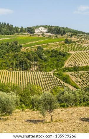 Radda in Chianti (Siena, Tuscany, Italy) - Ancient palace and vineyards - stock photo