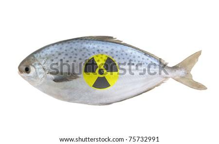 Radioactive raw fish isolated on white background - stock photo