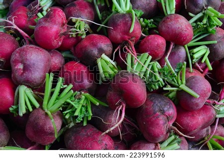 Radish: A high vitamin root vegetable that often served with salad - stock photo