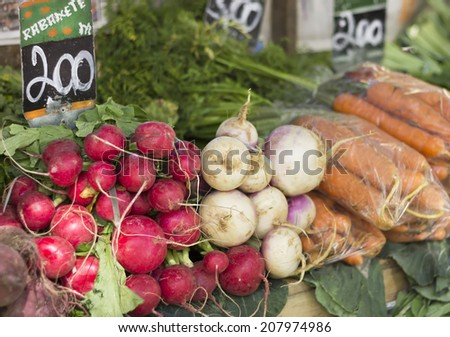 Radish, turnip, carrot and other organic foods - free fair - stock photo