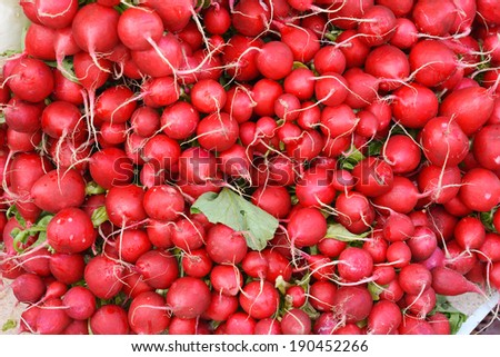Radishes as a Healthy and Nutritious Vegetable - stock photo