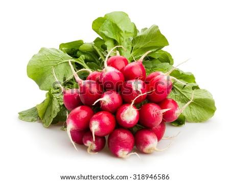 radishes isolated - stock photo