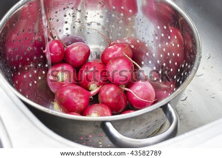 Radishes under tap water in a steel colander - stock photo