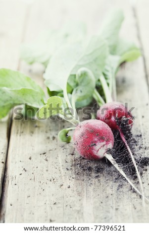 Radishes with leaves on wooden background - stock photo