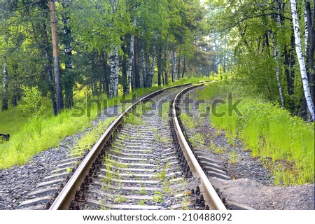 Railroad line is in the sunny forest