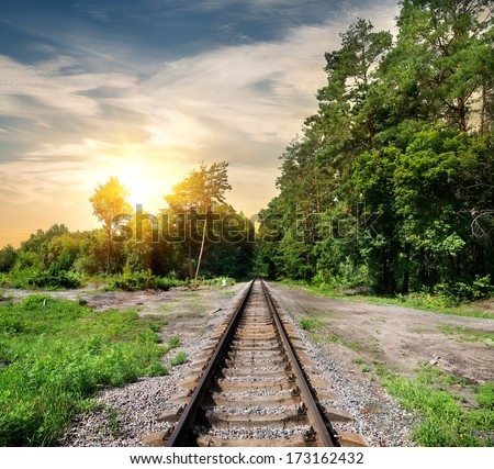 Railroad through the forest at the sunset - stock photo