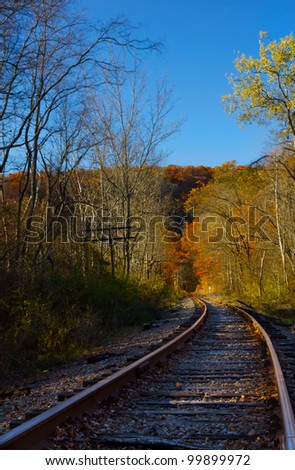 Railroad tracks in a rural forest.