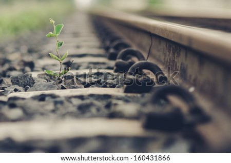 Railway and plant in the day in the countryside in Thailand - stock photo