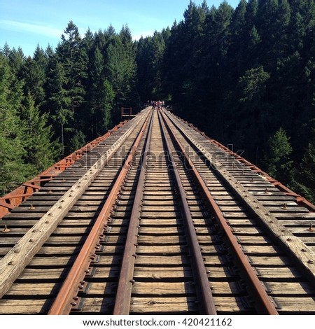 Railway bridge in forest in the Goldstream provincial park, vancouver island ,BC,Canada  - stock photo
