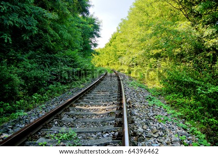 Railway line passing through the quiet forest - stock photo