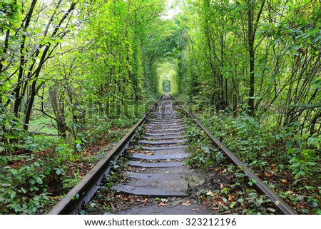 railway road in autumn forest - stock photo