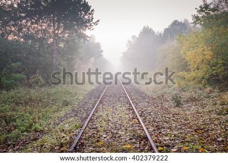 Railway tracks in misty day - stock photo