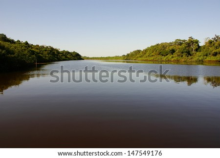 Rain forest mirrored in waters, on Rio Negro in the Amazon River basin, Brazil, South America - stock photo