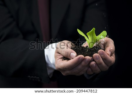 Rain on the plant in business man hand - stock photo