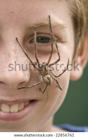 Rain Spider sitting on the face of a European boy with red hair