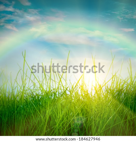 Rainbow and Spring green grass and sun on blue sky background - stock photo