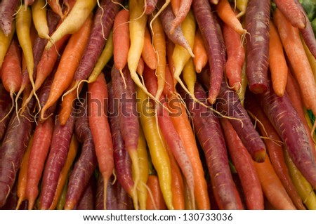 rainbow carrots - stock photo