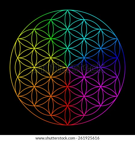 Rainbow flower of life - symbol of sacred geometry - stock photo