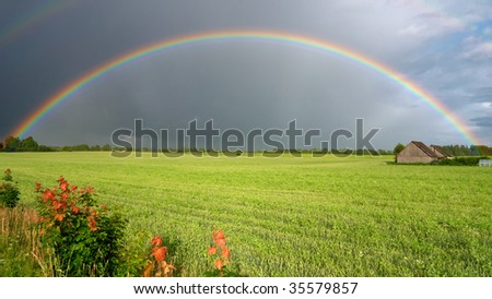 Rainbow over a field