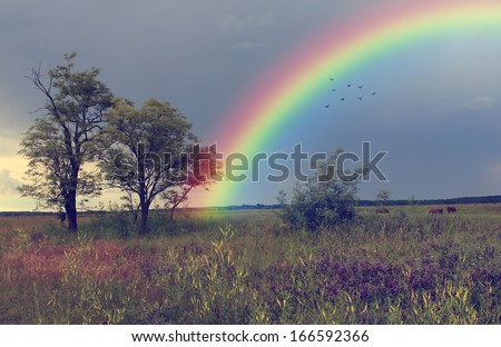 Rainbow over farmland - stock photo