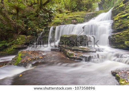 Rainforest jungle arround McLean Falls, The Catlins, South Island, New Zealand - stock photo