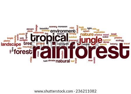 Rainforest word cloud concept - stock photo