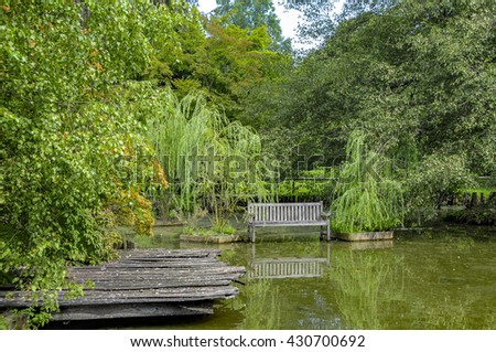 Rains caused a pond to overflow, creating the impression the bench is in the water. Shot in a botanic garden