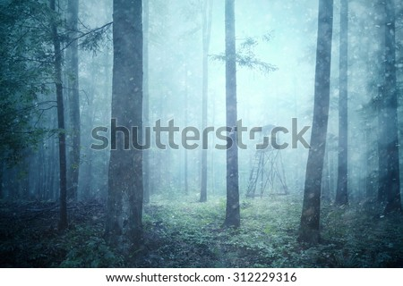 Rainy and snowy day in wild forest landscape with hunting tower. Deer and other wildlife hunting tower in magic foggy woodland.  - stock photo