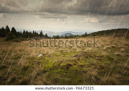 rainy day on a meadow - stock photo