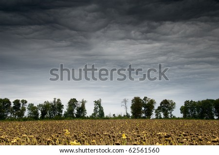 Rainy landscape with dramatic clouds