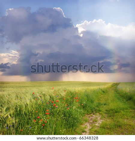 Rainy sky with rainbow over field and country road.
