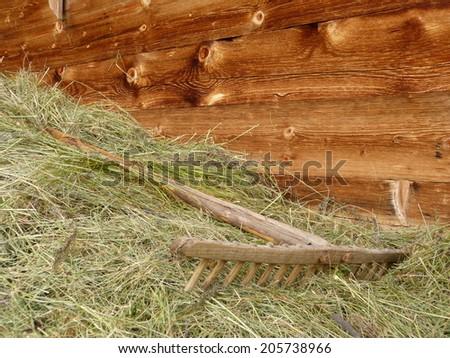 Rake in the hay - stock photo