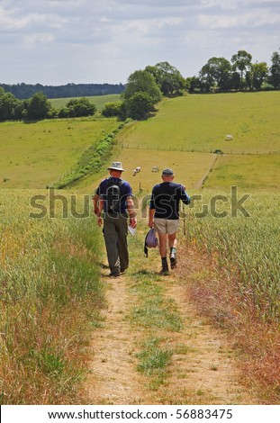 Ramblers on a track through a Wheat Field