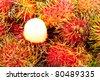 rambutan, a tropical fruit - stock photo