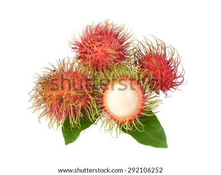 Rambutan with leaves isolated on white background - stock photo