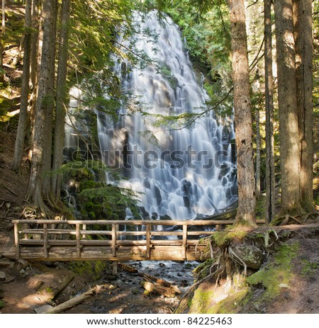 Ramona Falls and Wooden Foot Bridge along Hiking Trail in Oregon