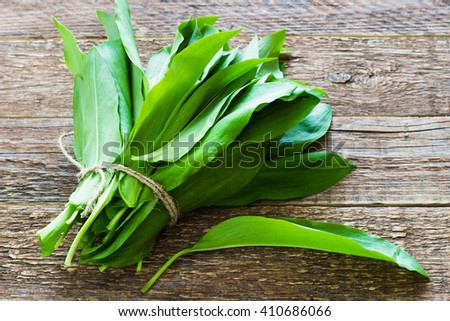 ramson (bear garlic) bunch tied with rope a wooden black background - stock photo