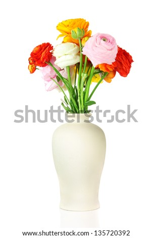 Ranunculus (persian buttercups) in vase, isolated on white - stock photo
