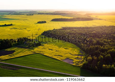 Rape fields in Lithuania, Europe - aerial view - stock photo