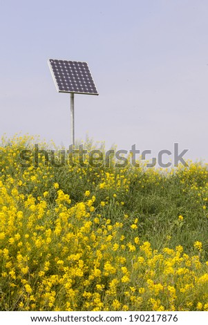 rapeseed and solar panel with blue sky - stock photo