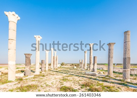 Raphana in present-day northern Jordan. It was a city of the Decapolis and is known as Qweilbeh. - stock photo