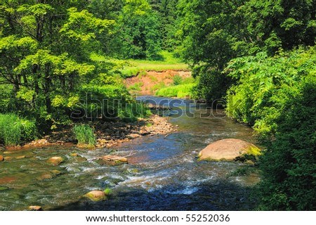 Rapid river with boulders in the thicket bushes - stock photo