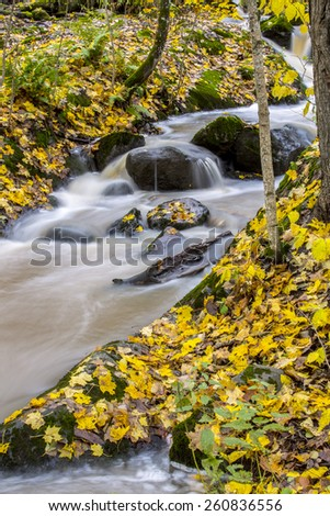 Rapids in the fall - stock photo