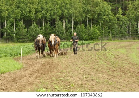 RASBO, SWEDEN - JULY 7: Unidentified people in retro working horses event. The official name is horses day and org are Rasbo nybyggarland on July 7, 2012 in Rasbo Sweden.